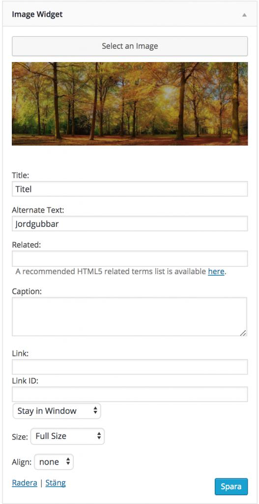 image widget lägga till en bild i sidomenyn